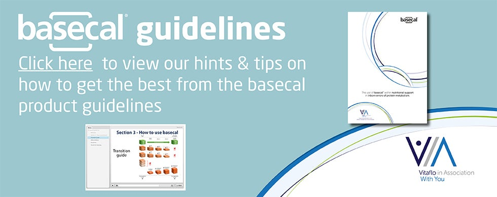 BASECAL GUIDELINES